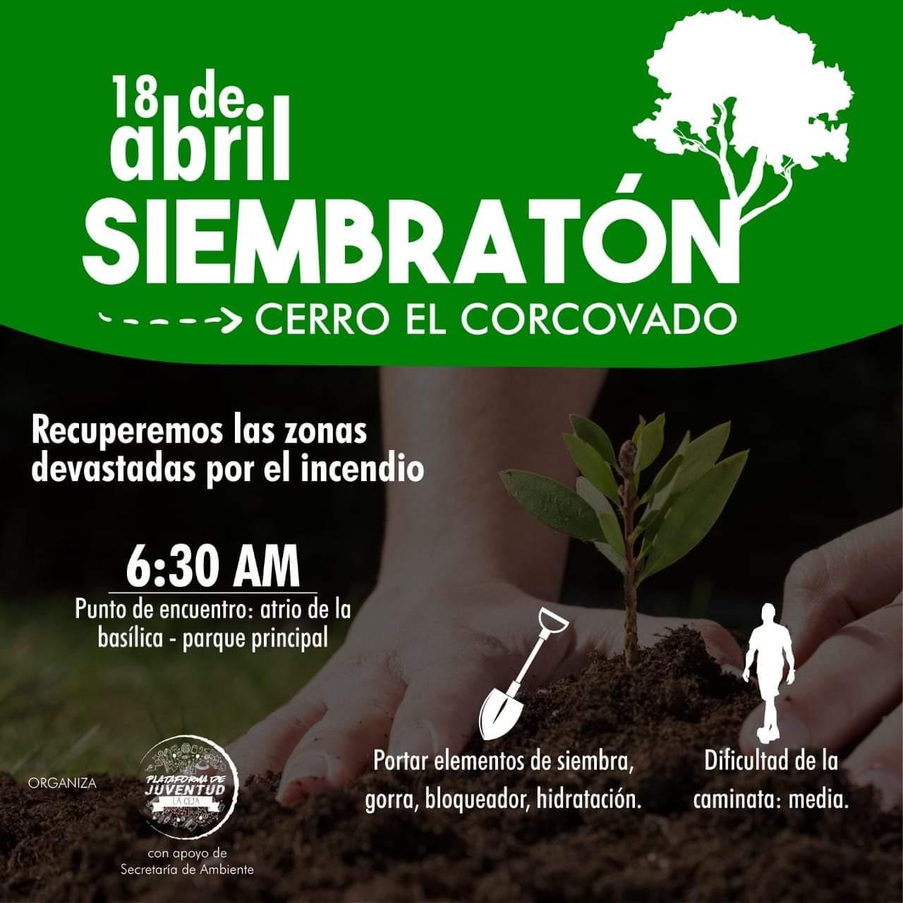 Siembraton La Ceja.jpg